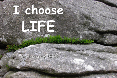 I choose life image