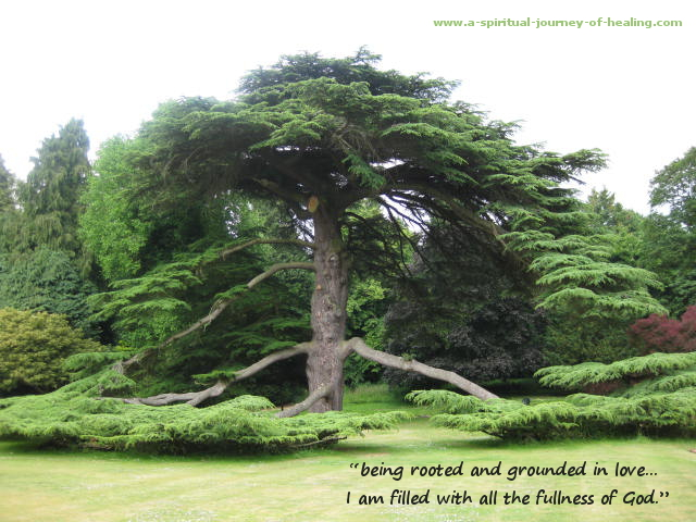 rooted in god