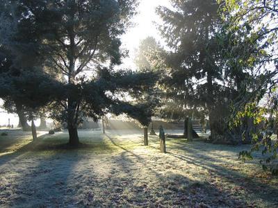Misty Graveyard (c)David Manser 2014