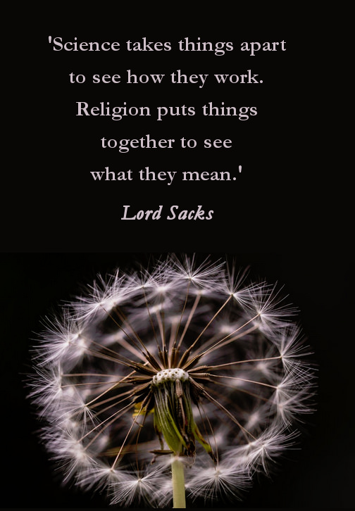 religion and science quote by Lord Sacks